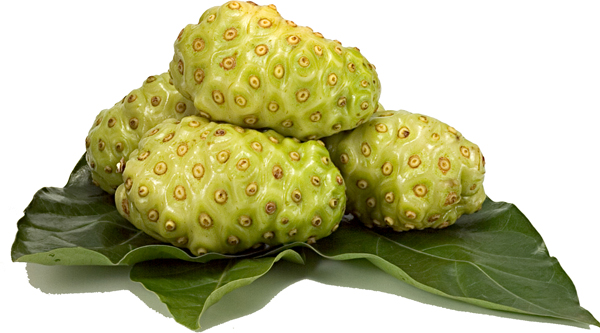 The Noni Glycoside (glucose)